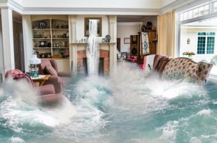 Insurance - Flooded Home